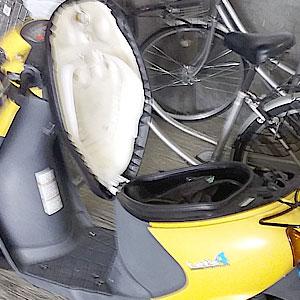 黄色のスズキレッツ4